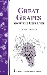 Great Grapes! Grow The Best Ever